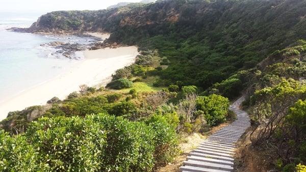 boardwalk great ocean walk