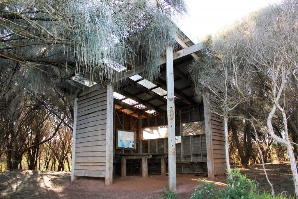 Campsite shelters on the Great Ocean Walk