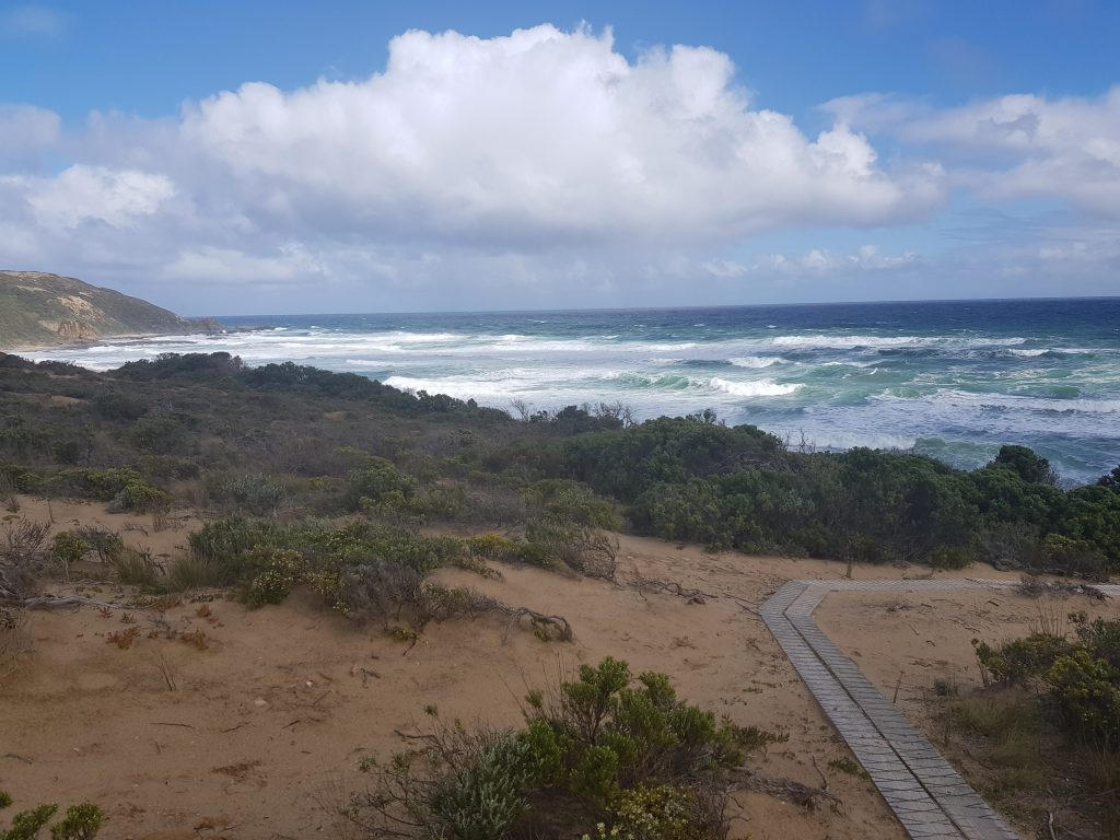 Boardwalks leading down to Station Beach and Rainbow Falls